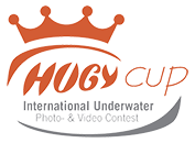 logo-hugycup-small